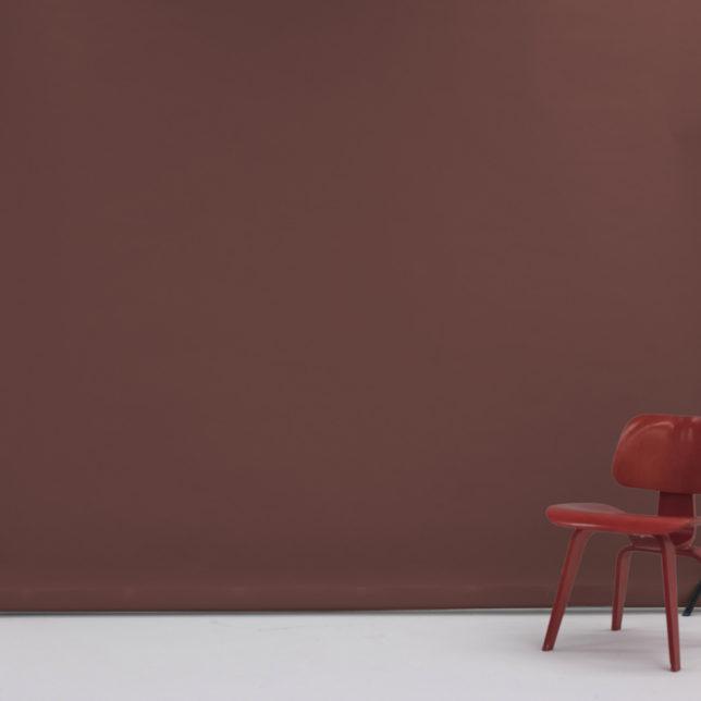 "107"" Chestnut. c/o Shine Portrait Studio"