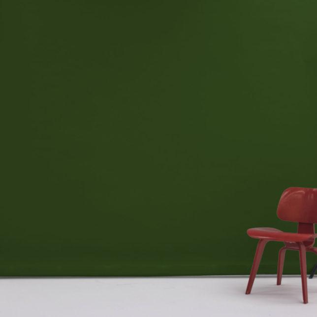 "107"" Dark Green. c/o Shine Portrait Studio"