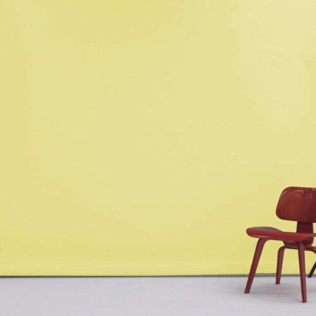 """107"""" Lemonaide. c/o Shine Portrait Studio"""