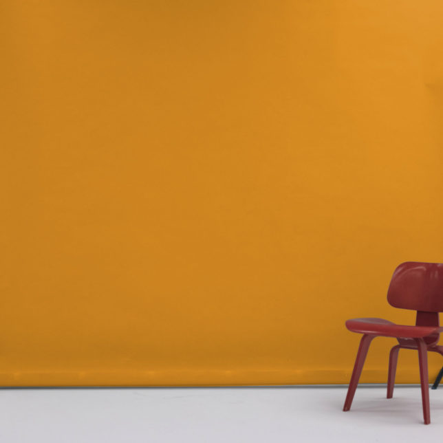 "107"" Yellow Orange. c/o Shine Portrait Studio"