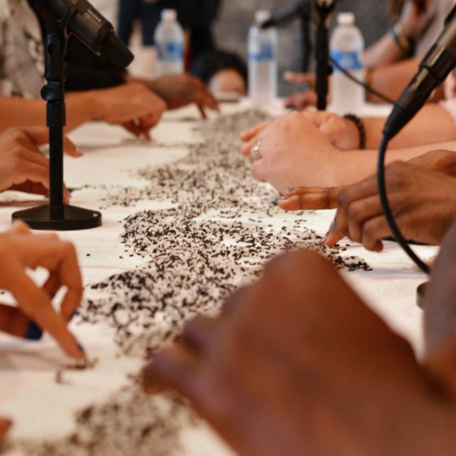 Close up of people's hands separating white rice from brown